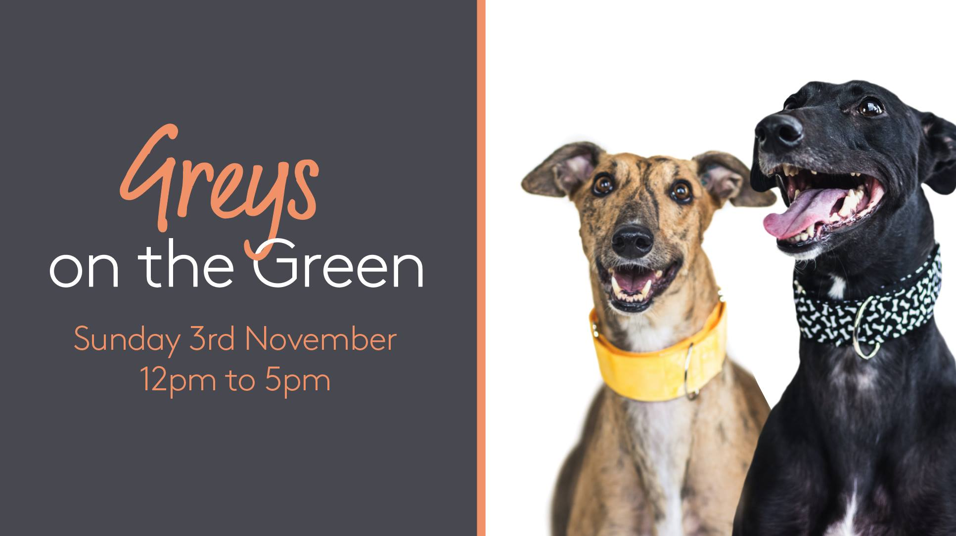 Greys on The Green event image