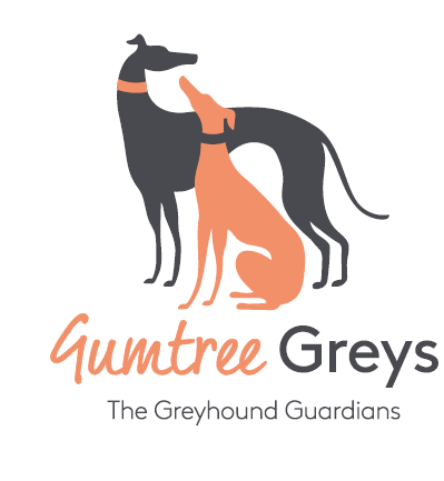 Gumtree Greys