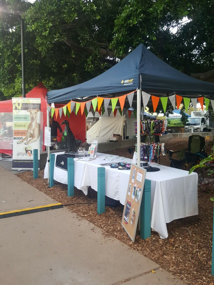 Gumtree Greys stall at Manly Markets